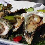 Activities | Arniston Oysters