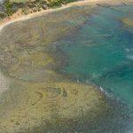 Activities | Fish traps - Still Bay