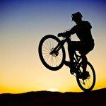 Activities | Wheelie