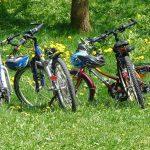 Activities | Bicycles