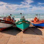 Activities | Boats